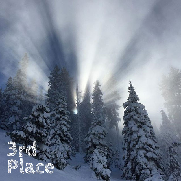 #TREWsnowledge #WinterPix 3rd Place | Snowledge