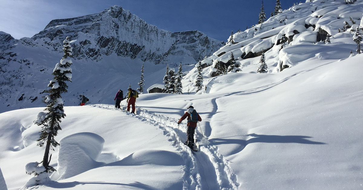 Backcountry Skiing Equipment Guide: 12 Essentials for Your Backpack