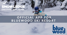 Bluewood Official App | Snowledge